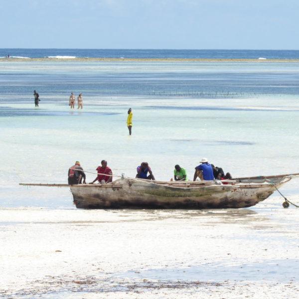 Wczasy Na Zanzibarze 2