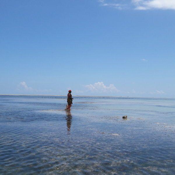 Wczasy Na Zanzibarze 9