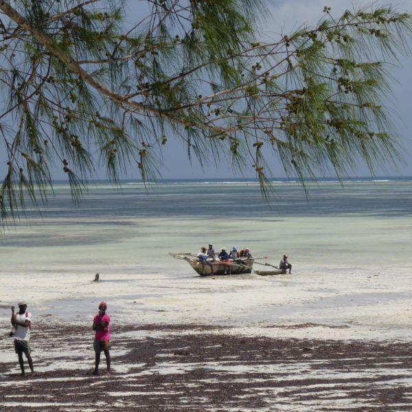 Wczasy Na Zanzibarze 1