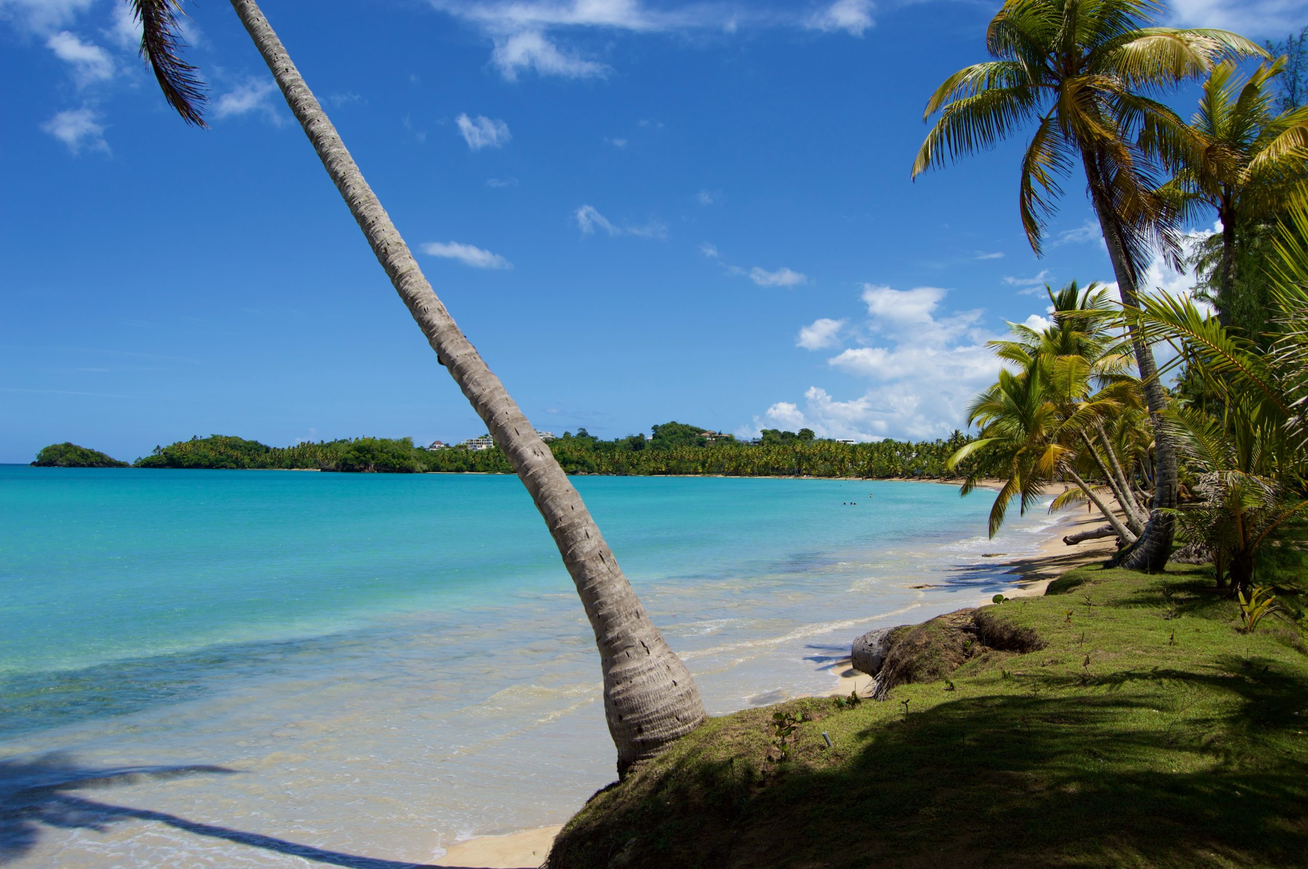 Zima 2021/22 Egzotyka W Rewelacyjnych Cenach Dominikana Meksyk Zanzibar